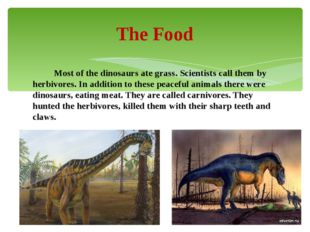 Most of the dinosaurs ate grass. Scientists call them by herbivores. In addi