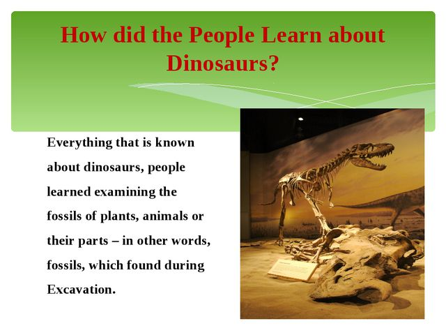 Everything that is known about dinosaurs, people learned examining the fossil...