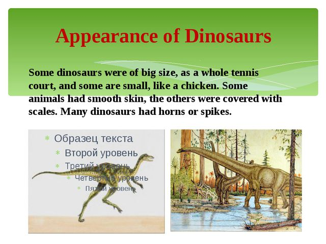Appearance of Dinosaurs Some dinosaurs were of big size, as a whole tennis co...