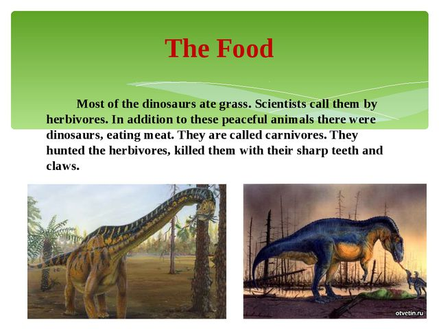 Most of the dinosaurs ate grass. Scientists call them by herbivores. In addi...