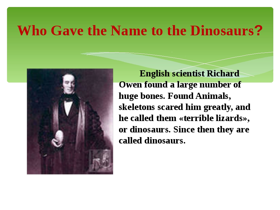 English scientist Richard Owen found a large number of huge bones. Found Ani...