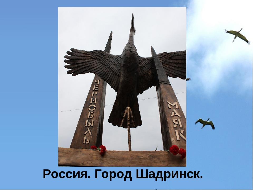 Россия. Город Шадринск.
