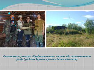 Остановка в участке «Хардьыгыныыр», место, где заготавливали рыбу ( ребята де