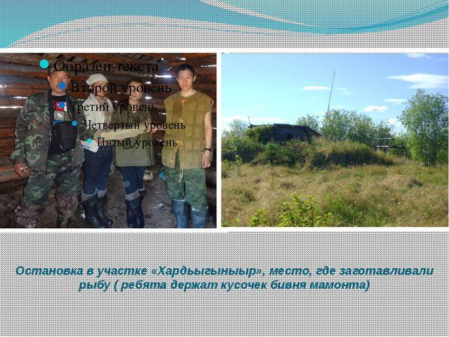 Остановка в участке «Хардьыгыныыр», место, где заготавливали рыбу ( ребята де...