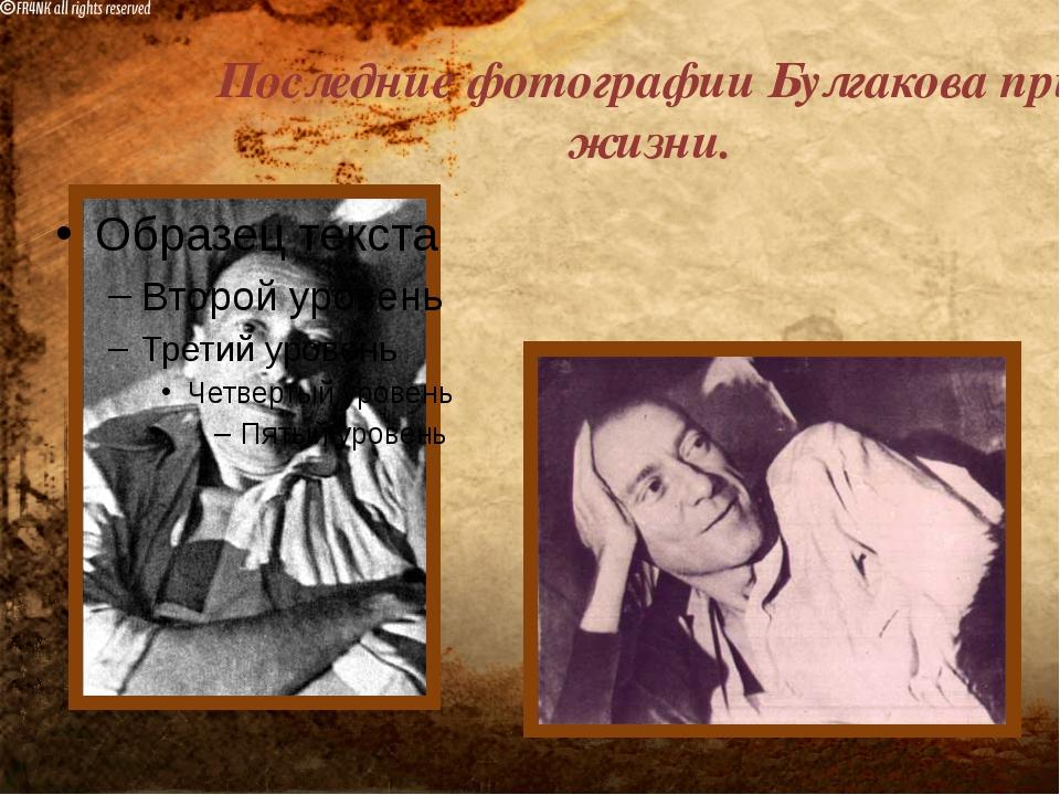 Последние фотографии Булгакова при жизни.