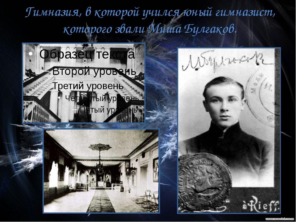 Гимназия, в которой учился юный гимназист, которого звали Миша Булгаков.