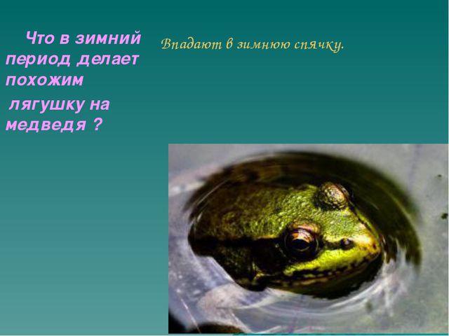 Впадают в зимнюю спячку.      Что в зимний период делает похожим  лягушку...