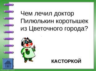 Чем лечил доктор Пилюлькин коротышек из Цветочного города? КАСТОРКОЙ © Фокин