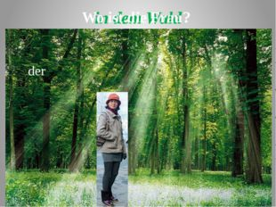 in dem Wald der Wo ist die Frau?