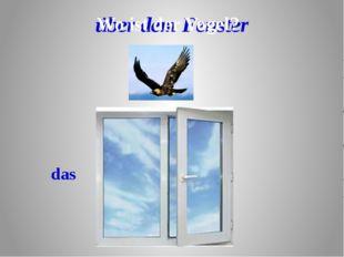über dem Fenster das Wo ist der Vogel?