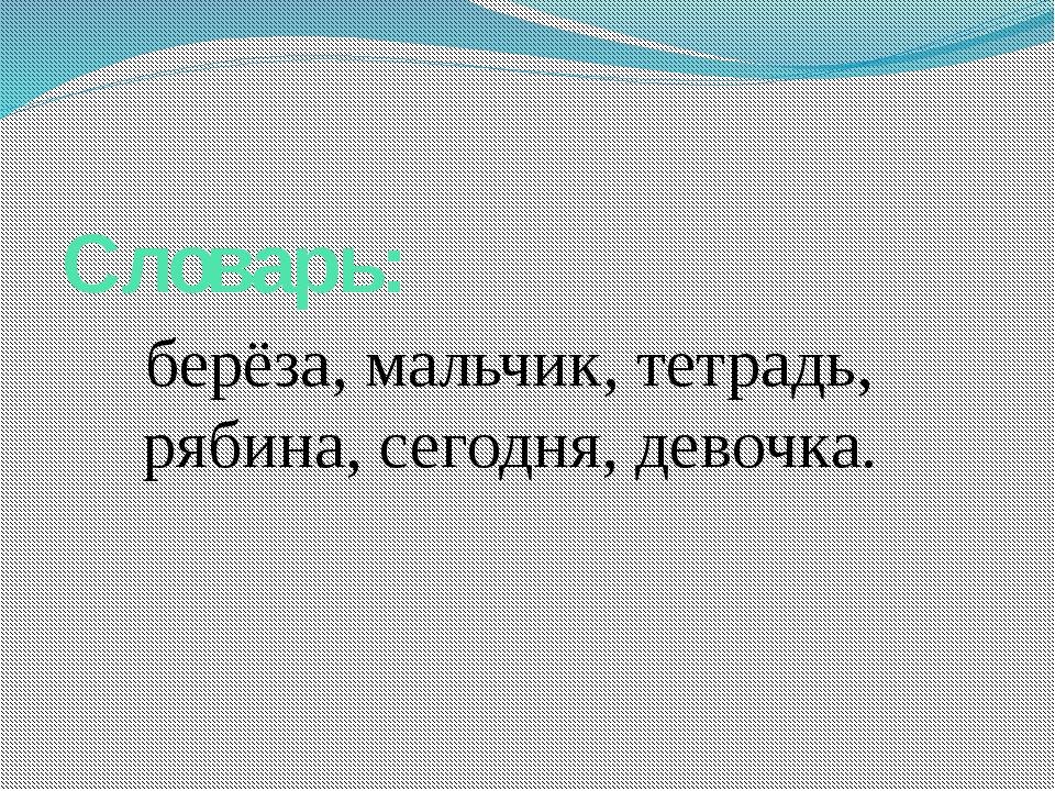 Словарь: берёза, мальчик, тетрадь, рябина, сегодня, девочка.
