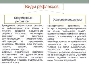 Виды рефлексов Безусловные рефлексы Условные рефлексы Врожденные рефлекторные