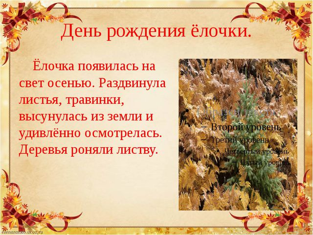День рождения ёлочки. Ёлочка появилась на свет осенью. Раздвинула листья, тра...