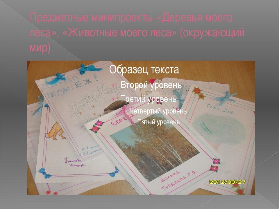 Предметные минипроекты «Деревья моего леса», «Животные моего леса» (окружающи...