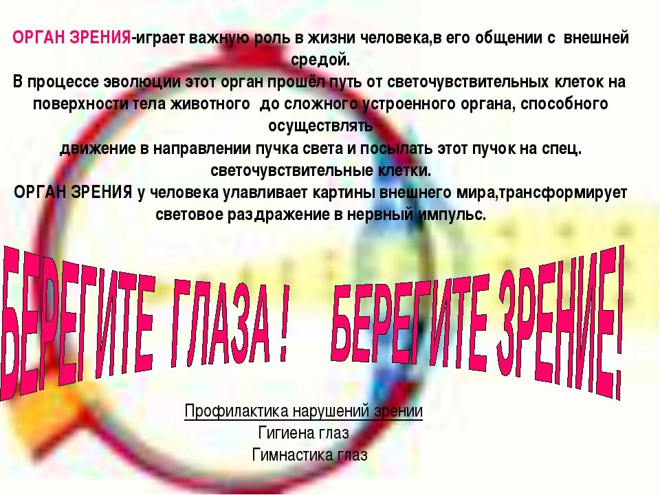 ОРГАН ЗРЕНИЯ-играет важную роль в жизни человека,в его общении с внешней сред...