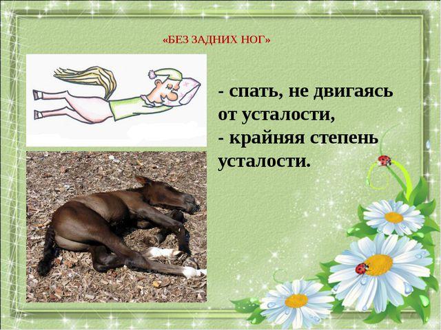 «БЕЗ ЗАДНИХ НОГ» - спать, не двигаясь от усталости, - крайняя степень усталос...