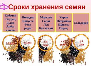 Сроки хранения семян Кабачок Огурец Дыня Арбуз тыква Помидор Капуста Репа ред