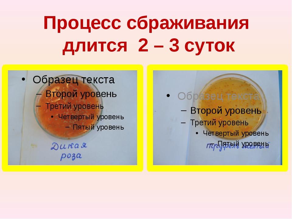 Процесс сбраживания длится 2 – 3 суток