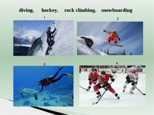 2 3 4 1 diving, hockey, rock climbing, snowboarding