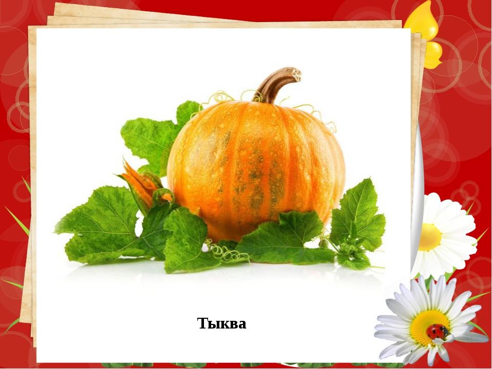 Конкурс «Листья и плоды» Соотнесите лист и плод древесного растения . Определ...