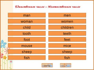 man woman child tooth foot sheep mouse fish men women children teeth feet she