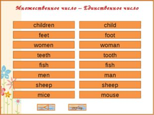 child foot woman tooth fish sheep man mouse children feet women teeth fish sh