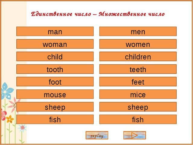 man woman child tooth foot sheep mouse fish men women children teeth feet she...
