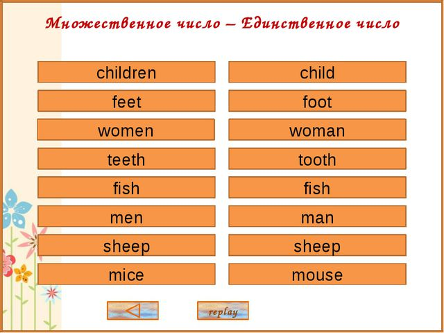child foot woman tooth fish sheep man mouse children feet women teeth fish sh...