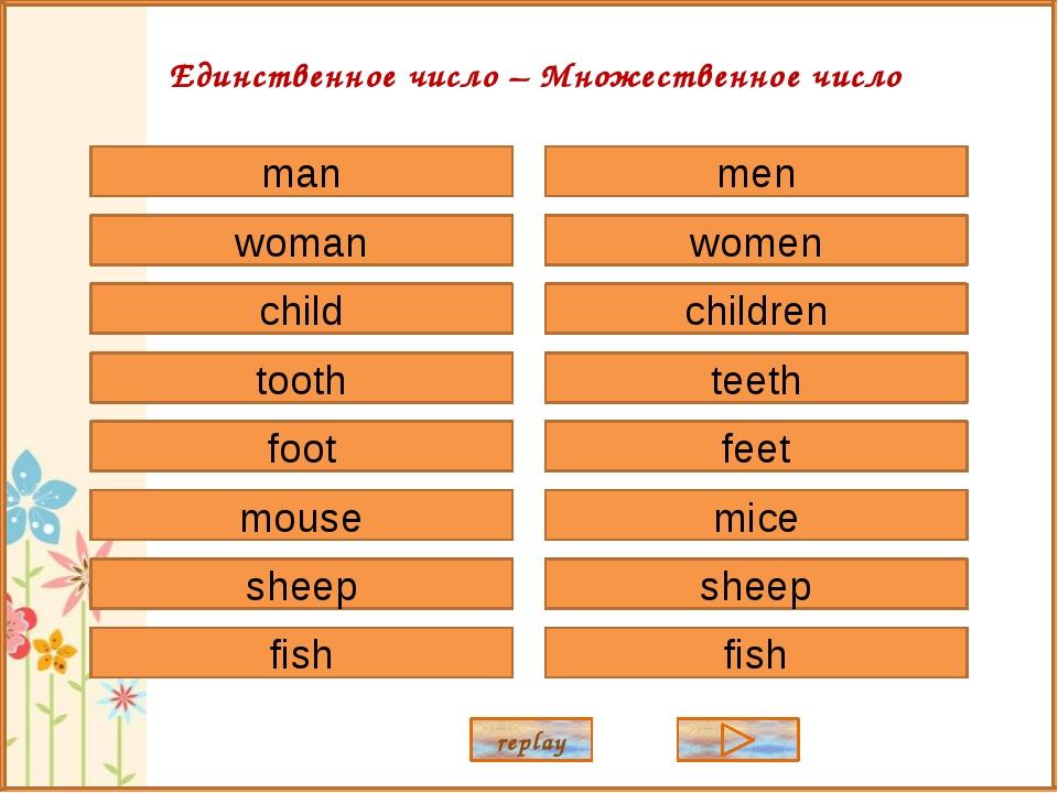 man woman child tooth foot sheep mouse fish men women children teeth feet she...