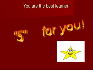 You are the best learner!