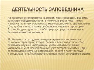 На территории заповедника«Брянский лес» запрещены всевиды хозяйственной дея