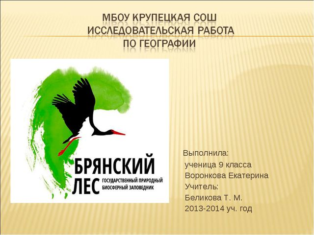 Доклад на тему брянский лес 4626