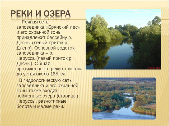 Речная сеть заповедника«Брянский лес» иегоохранной зоны принадлежит бассе...