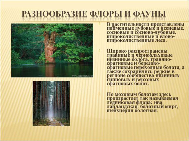 В растительности представлены пойменные дубовые и ясеневые, сосновые и соснов...