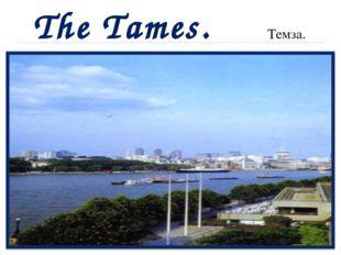 The Tames. Темза.