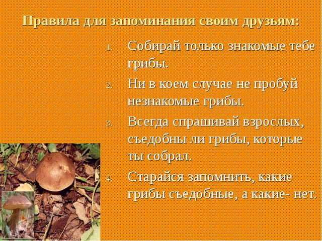 Правила для запоминания своим друзьям: Собирай только знакомые тебе грибы. Н...