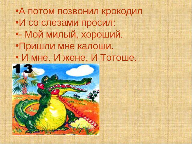 А потом позвонил крокодил И со слезами просил: - Мой милый, хороший. Пришли м...