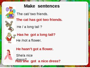 Make sentences Make sentences The cat/ two friends. He /not a flower. She/a n