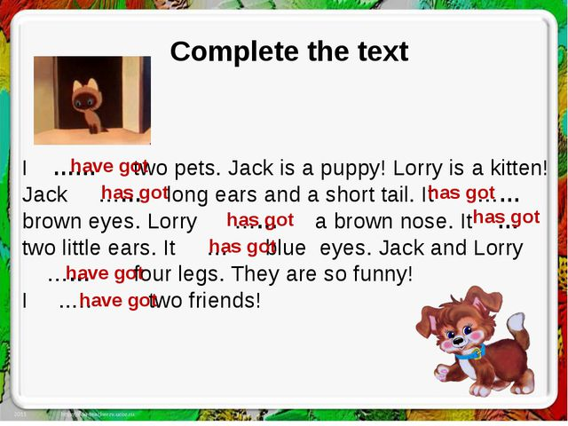Complete the text I …… two pets. Jack is a puppy! Lorry is a kitten! Jack ……...
