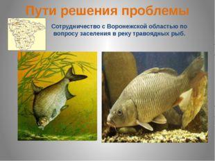 Пути решения проблемы Сотрудничество с Воронежской областью по вопросу заселе