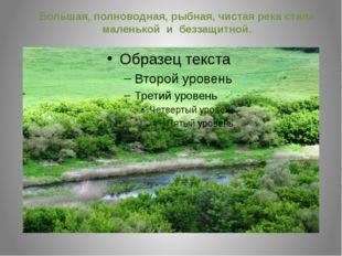 Большая, полноводная, рыбная, чистая река стала маленькой и беззащитной.