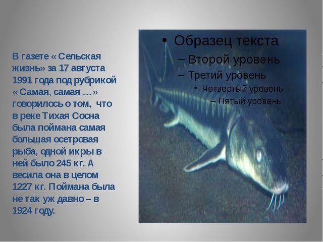 В газете « Сельская жизнь» за 17 августа 1991 года под рубрикой « Самая, сам...