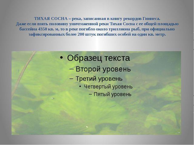 ТИХАЯ СОСНА – река, записанная в книгу рекордов Гиннеса. Даже если взять пол...