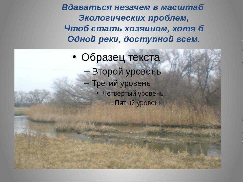 Вдаваться незачем в масштаб Экологических проблем, Чтоб стать хозяином, хотя...