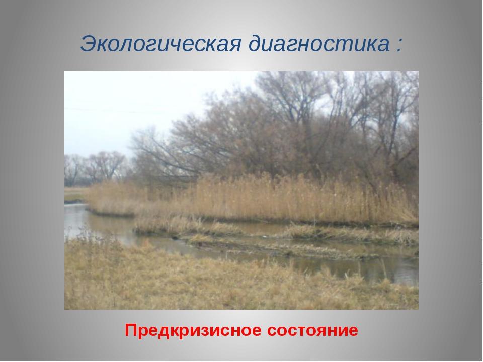 Экологическая диагностика : Предкризисное состояние