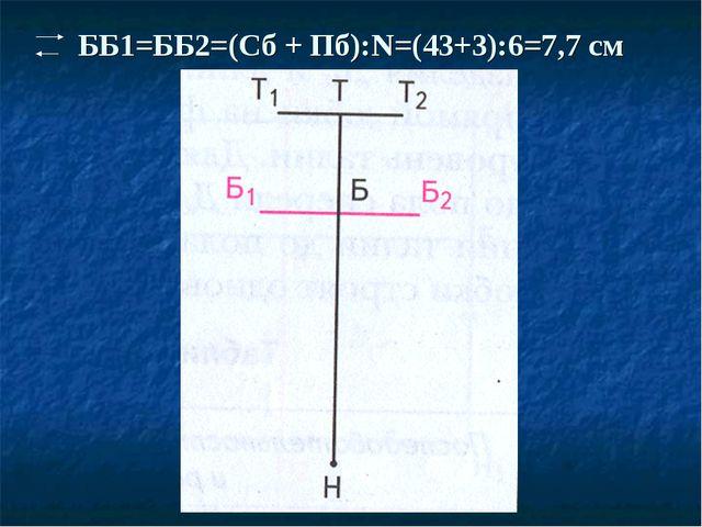 ББ1=ББ2=(Сб + Пб):N=(43+3):6=7,7 см