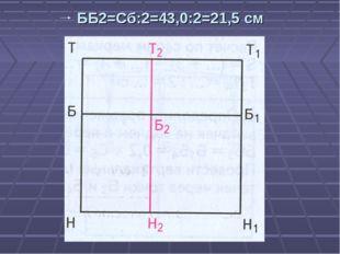 ББ2=Сб:2=43,0:2=21,5 см