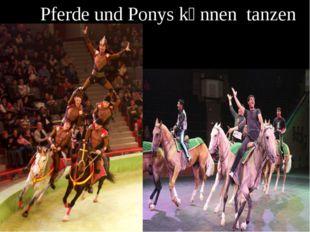 Pferde und Ponys kӧnnen tanzen