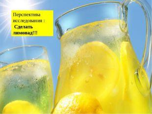 Перспектива исследования : Сделать лимонад!!! Химический состав Мякоть плодо