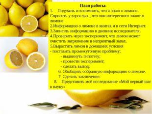 План работы: Подумать и вспомнить, что я знаю о лимоне. Спросить у взрослых